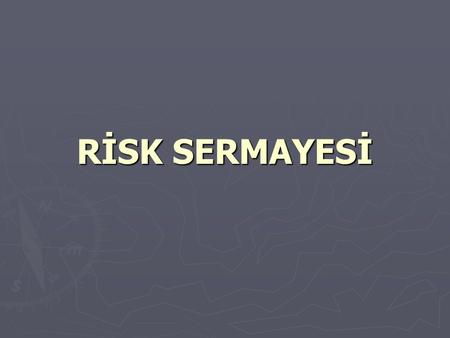 RİSK SERMAYESİ.