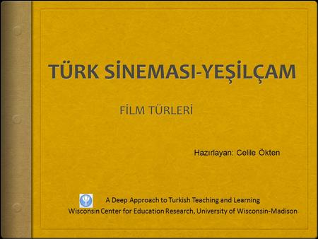 A Deep Approach to Turkish Teaching and Learning Wisconsin Center for Education Research, University of Wisconsin-Madison Hazırlayan: Celile Ökten.