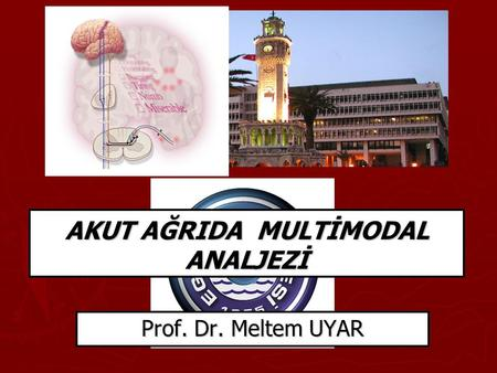 AKUT AĞRIDA MULTİMODAL ANALJEZİ Prof. Dr. Meltem UYAR.