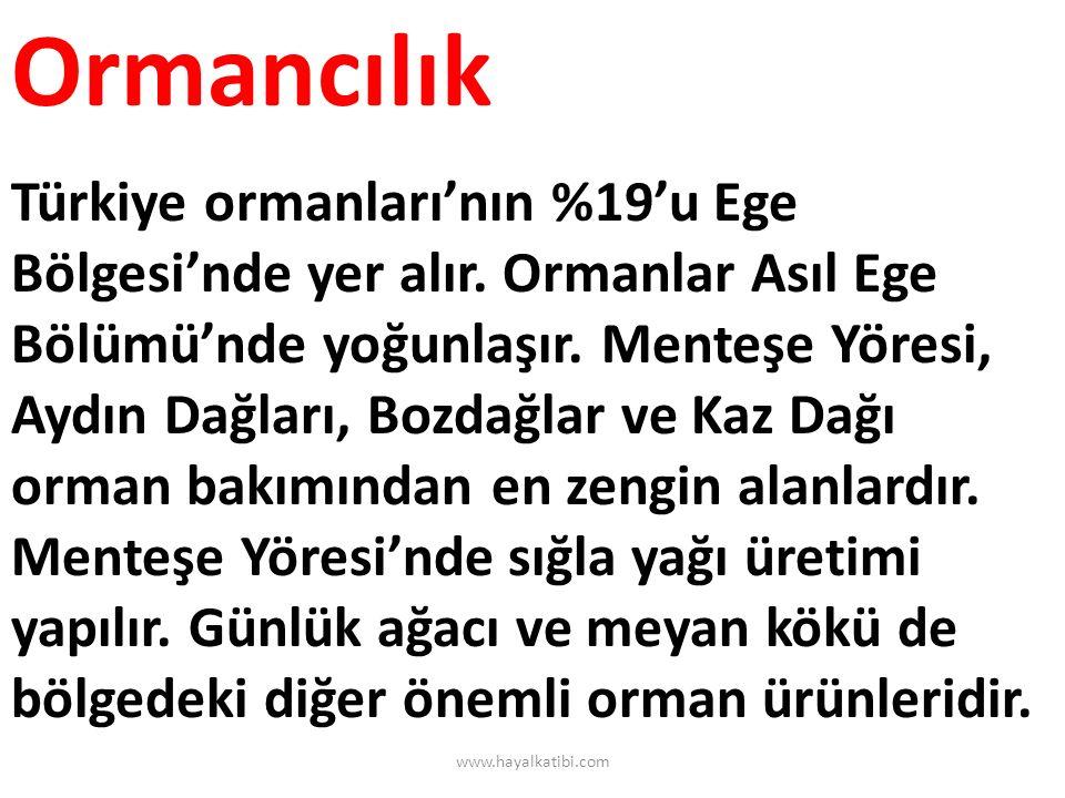 Madenler ve Enerji Kaynakları Madenler : Krom üretiminde ikinci sırayı alan bölgede, Köyceğiz, Marmaris, Emet'te krom çıkarılır.