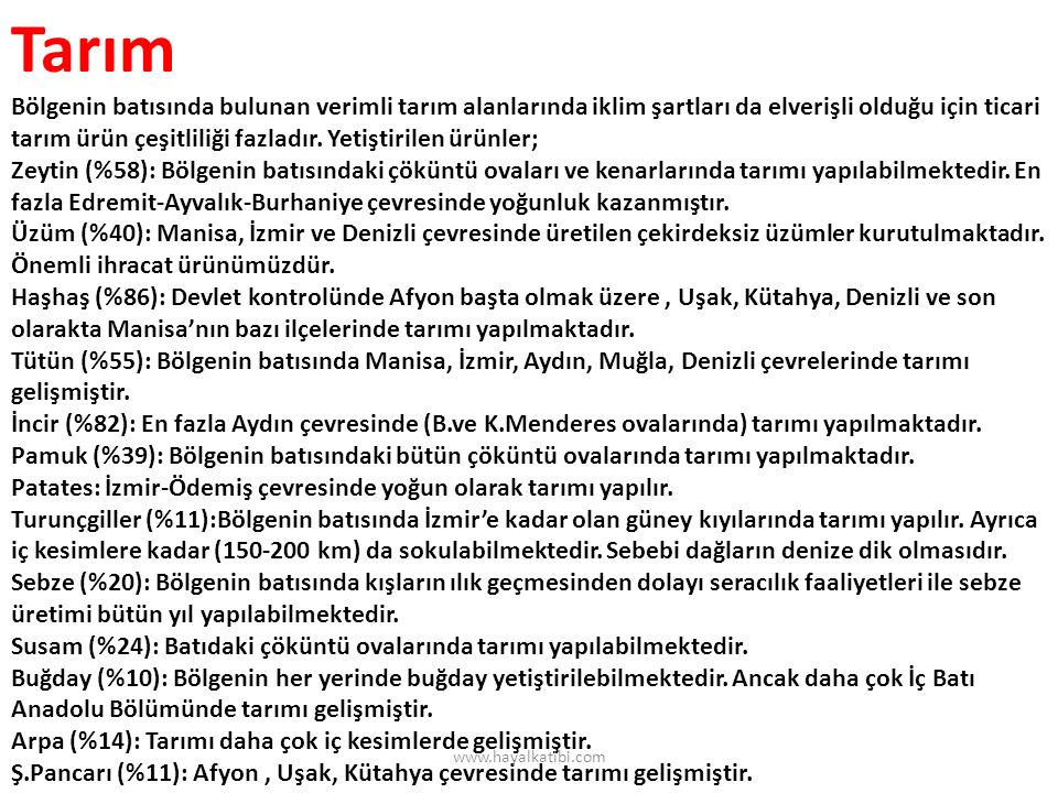 Hayvancılık Büyük kentler çevresinde (İzmir-Manisa-Denizli) kümes hayvancılığı, Muğla, Aydın, İzmir, Manisa çevresinde.
