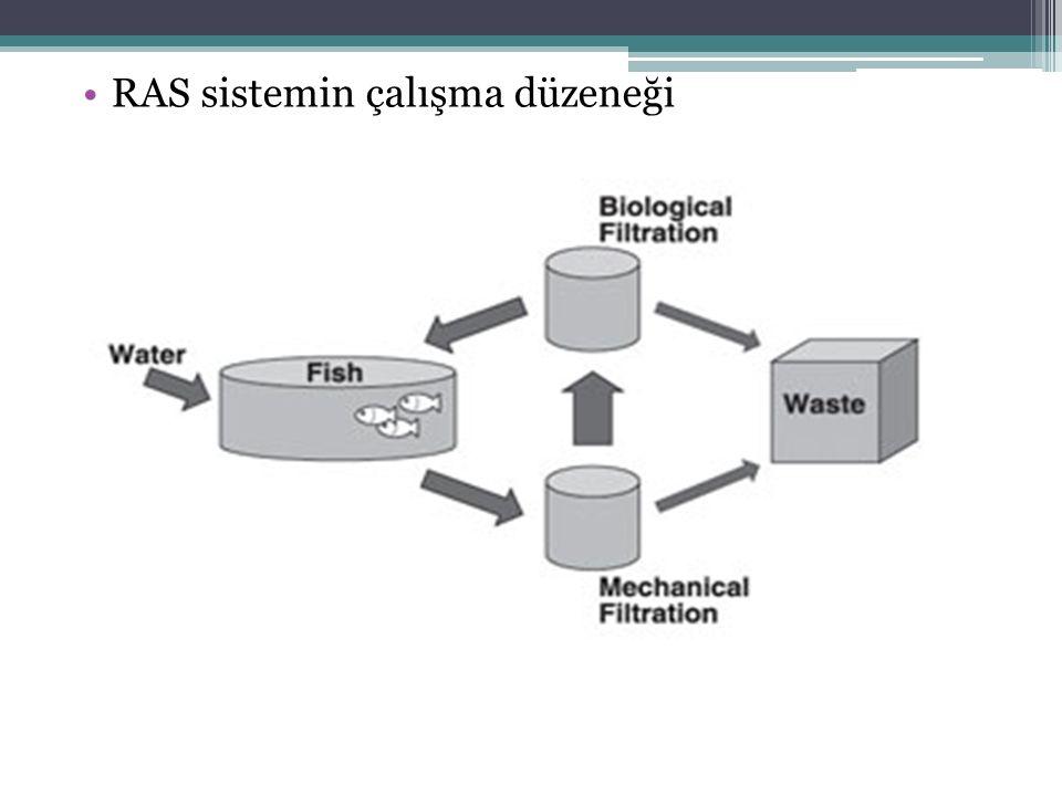 Kapalı devre sisteminin bileşenleri Balık tankı (Işıklandırma, otomatik yemleme) Boru ve pompalar Biyolojik Filtrasyon Mekanik Filtrasyon (tambur, kartuş) Protein ayrıştırıcı (Protein skimmer) Gaz giderici (desaturasyon kolonu) Sterilizasyon (UV, OZON) Isıtma/soğutma Oksijen jeneratörleri (havalandırma)