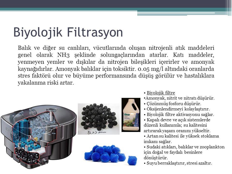 Mekanik Filtrasyon (KUM FİLTRE VE/VEYA TAMBUR FİLTRE) Kapalı devre sistemlerinde en önemli sorunların başında askıdaki katı maddelerin (dışkı, yenmemiş yemler, bakteri kolonileri vb.) birikimi gelmektedir.