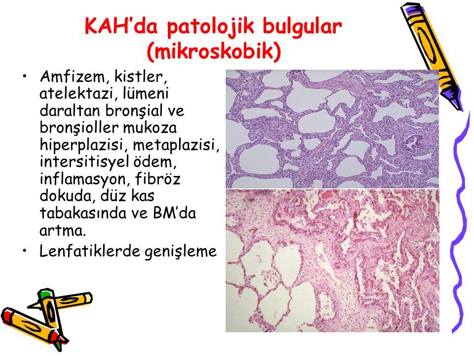 KAH'da akciğer mekaniklerinde değişiklikler Erken dönemde artmış pulmoner direnç ve artmış solunum yolu reaktivitesi vardır.
