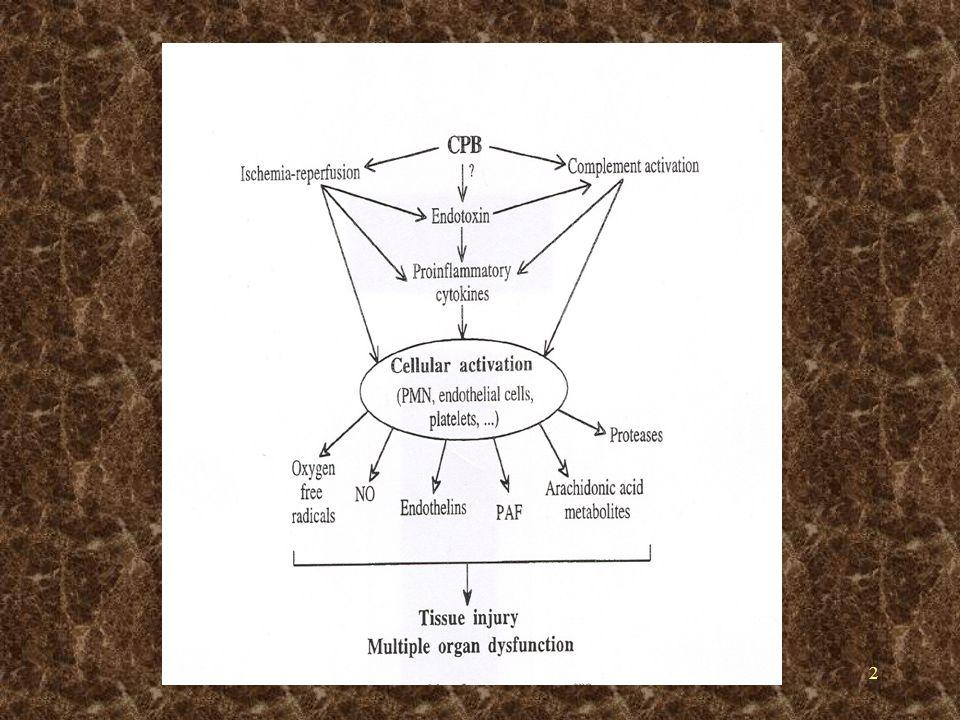 3 PARAMETRELER SKOR Yaş (yıl) 1a 1a 1a 1a Kadın1 KOAH1 Ekstrakardiyak arteriopati (carotid occlusion >50%, claudication) 2 Nörolojik disfonksiyon 2 Geçirilmiş Cerrahi 3 Serum creatinine >200 µmol/L 2 Kritik preoperatif Durum b 3 Unstable angina 2 Sol ventriküler Disfonksiyon EF 30-50% EF<3013 Yeni MI (<90gün) 2 Pulmoner Hipertansiyon (Systolic PAP > 60 mmHg) 2 Acil2 Eşlik Eden Cerrahi 2EuroSCORE a 60 yaşından sonra her 5 yıla puan b VT, VF, masaj, preoperatif solunum desteği, preoperatif inotropik destek, IABP, preoperatif ABY (anuria or oliguria < 10 mL/h)
