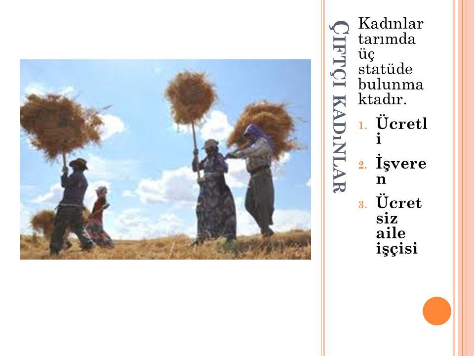 Kırsal alanda kadınlar; Ücretsiz aile işgücü ile aile tüketimine ya da pazara yönelik bitkisel ve hayvansal ürün elde ederek tarımsal üretim , Ev işleri ile birlikte aile tüketimine ya da pazara yönelik evde mal ve hizmet üreterek(tarımsal üretimden sağlanan ürünleri işleyerek) ev içi üretim(hanehalkı üretimi) , Çocuk yetiştirme ile bilgi, beceri, deneyim gibi insan kaynaklarının nesillere aktarımını sağlayarak insan kapitali üretimi ve Tarım sektöründe ücretli çalışarak ücretli iş kapsamında üretim faaliyetlerine katılmaktadırlar