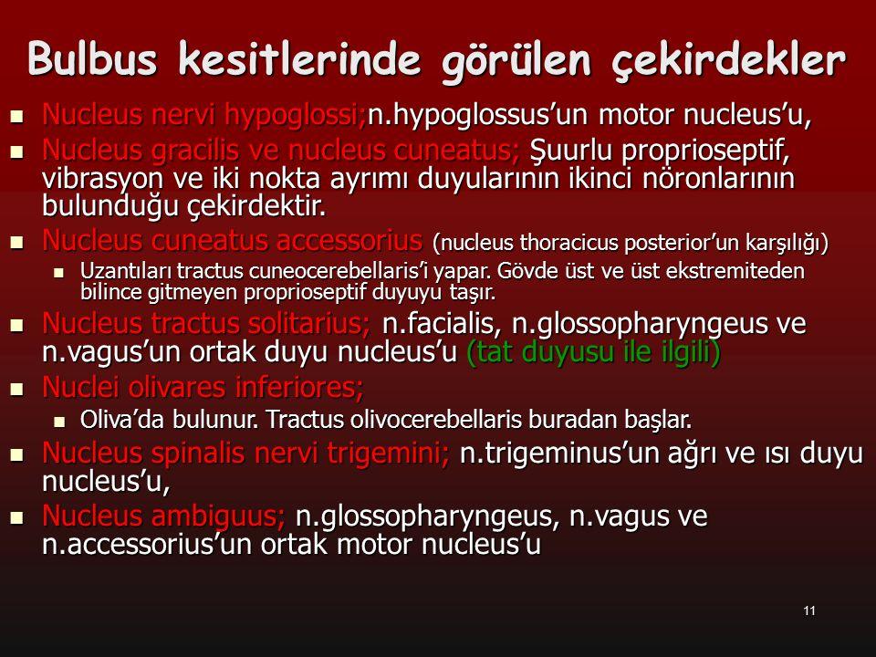 12 Kranyal sinir nucleus'ları Nucleus salivatorius inferior; Nucleus salivatorius inferior; –n.glossopharyngeus'un parasempatik nucleus'u, Nucleus dorsalis nervi vagi; Nucleus dorsalis nervi vagi; –n.vagus'un parasempatik nucleus'u, Bunlardan başka n.vestibulocochlearis'in vestibular kısmı ile ilgili olan nuclei vestibulares'in alt nucleus'larından nucleus vestibularis inferior, medialis ve lateralis medulla oblongata'da yer alır.