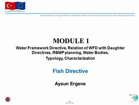 MODULE 1 MODULE 1 Water Framework Directive, Relation of WFD with Daughter Directives, RBMP planning, Water Bodies, Typology, Characterization Fish Directive.