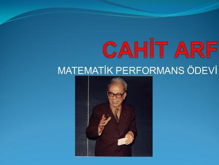 MATEMATİK PERFORMANS ÖDEVİ