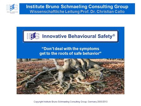 Copyright Institute Bruno Schmaeling Consulting Group, Germany 2000/2013 Institute Bruno Schmaeling Consulting Group Wissenschaftliche Leitung Prof. Dr.