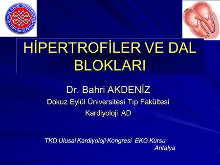 HİPERTROFİLER VE DAL BLOKLARI