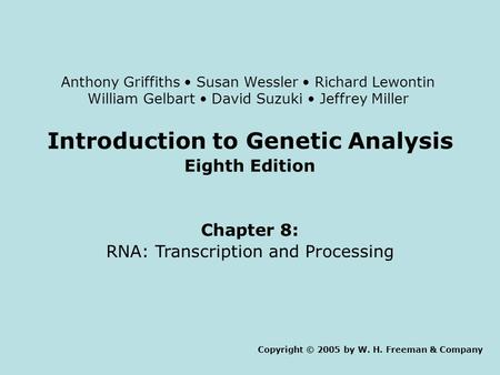 Introduction to Genetic Analysis Eighth Edition Chapter 8: RNA: Transcription and Processing Copyright © 2005 by W. H. Freeman & Company Anthony Griffiths.