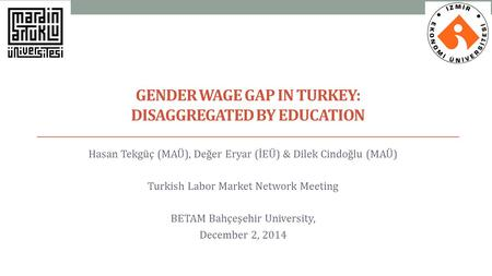 Gender Wage Gap in Turkey: Disaggregated by educatIon