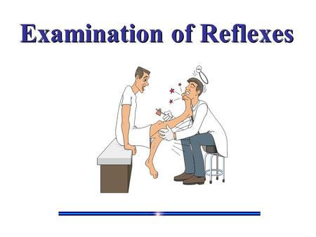 Examination of Reflexes. Reflexes Spinal cord reflexes represent the most basic of motor responses. These reflexes are carried out entirely within the.