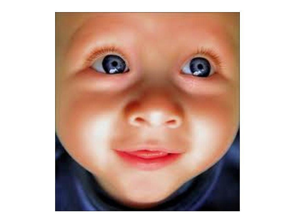 YIL Toplam gelen kan örneği sayısı Saptanan fenilketonuri sayısı Saptanan hiperfenilalaninemili bebek sayısı 200174241258 200272091368 200380199331 200487067322 200590975385 2006865376283 İZMİR İLİ PKU TARAMA SONUÇLARI