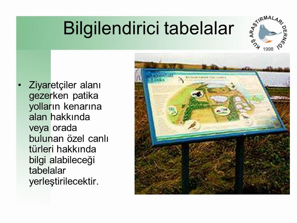 •Yöre halkı arasında yumurtalık lagünlerinin doğal değerlerinin korunması konusunda bilinç, ilgi ve desteğin geliştirilmesi