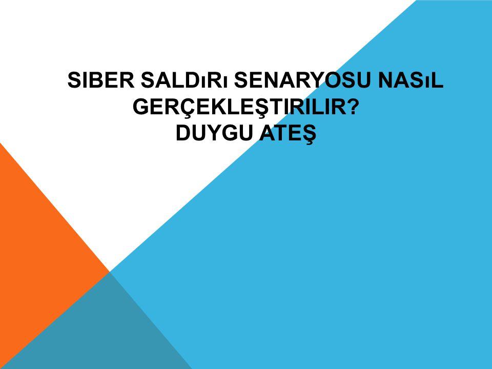 SIBER SALDıRı NEDIR.