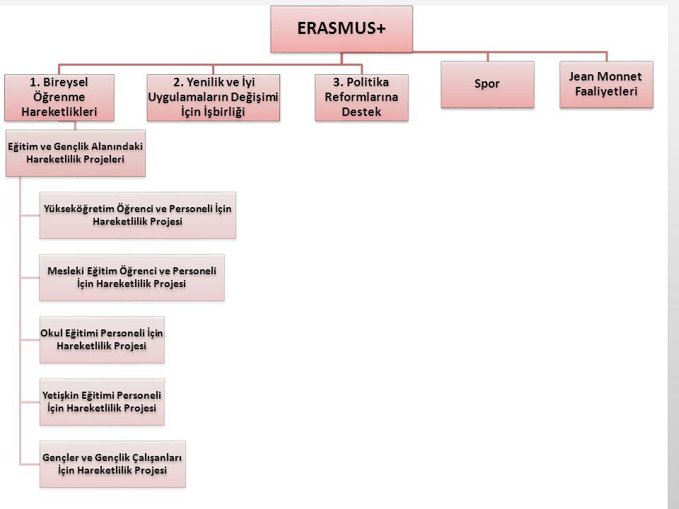 Erasmus+ Hedef Kitlesi •Eğitim, gençlik ve spor alanında faaliyeti olan kurum/kuruluşlar •İşletmeler •Eğitim çalışanları •Örgün eğitim öğrencileri •Yetişkin eğitimi öğrenicileri •Gençler •Gençlik çalışanları