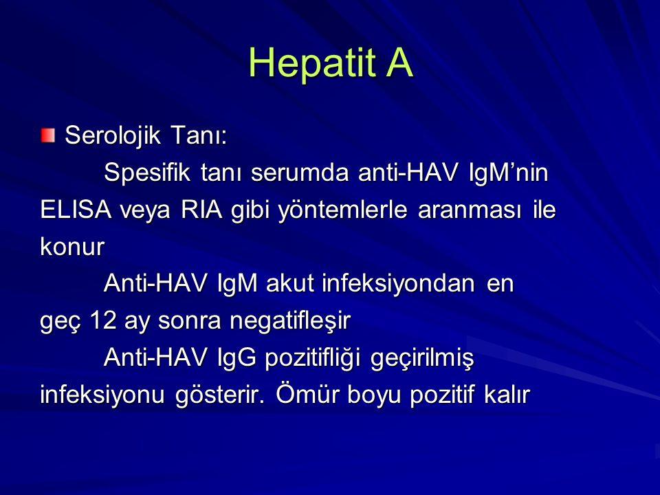 Hepatit A Bulaşma yolları 1-Kişiden kişiye 1-Kişiden kişiye 2-Besinler ve su yoluyla 2-Besinler ve su yoluyla 3-Parenteral yol ile bulaşma 3-Parenteral yol ile bulaşma 4-Perinatal geçiş 4-Perinatal geçiş