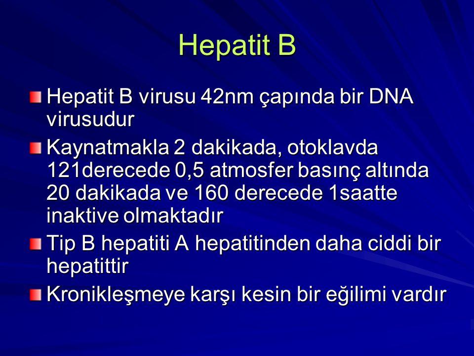 Hepatit B Serolojik Tanı: Serolojik Tanı: Temastan 1-12 hafta sonra veya semptomların başlangıcından 2-8 hafta önce inkübasyon periyodu boyunca HBsAg serumda saptanır ve 3 ay sonra kaybolur Temastan 1-12 hafta sonra veya semptomların başlangıcından 2-8 hafta önce inkübasyon periyodu boyunca HBsAg serumda saptanır ve 3 ay sonra kaybolur HBsAg'nin 6 aydan uzun süre sebat etmesi kronik hepatit B infeksiyonu gelişeceğine işaret etmektedir HBsAg'nin 6 aydan uzun süre sebat etmesi kronik hepatit B infeksiyonu gelişeceğine işaret etmektedir Anti-HBs, HBsAg kaybolduktan sonra ve genellikle hastalığın başlangıcından 3 ay sonra ortaya çıkar, iyileşme ve immuniteyi gösterir Anti-HBs, HBsAg kaybolduktan sonra ve genellikle hastalığın başlangıcından 3 ay sonra ortaya çıkar, iyileşme ve immuniteyi gösterir