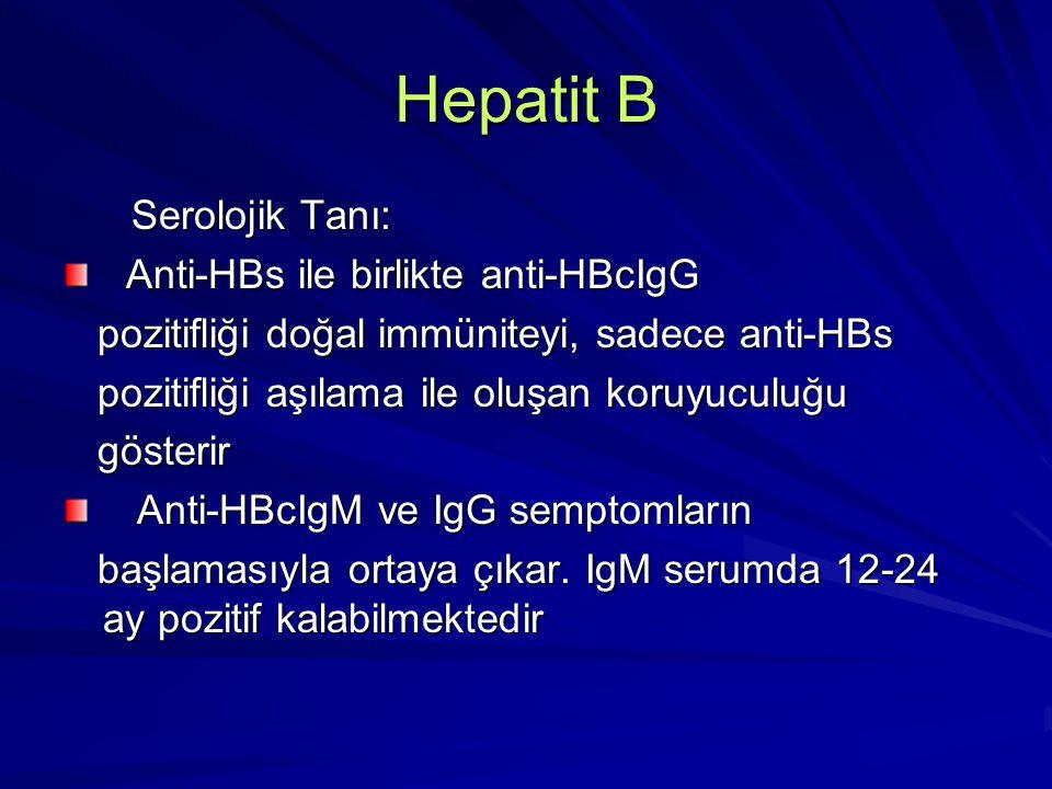 Hepatit B Serolojik Tanı: Serolojik Tanı: Anti HBcIgM'nin varlığı akut Anti HBcIgM'nin varlığı akut infeksiyonun en önemli göstergesidir infeksiyonun en önemli göstergesidir HBV'ne maruz kalanlarda anti-HBcIgG HBV'ne maruz kalanlarda anti-HBcIgG yıllarca pozitif kalabilir yıllarca pozitif kalabilir HBeAg viral replikasyonun devam HBeAg viral replikasyonun devam ettiğini ve infektiviteyi gösterir.