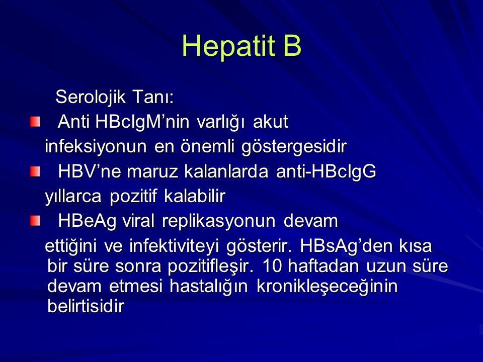 Hepatit B Serolojik Tanı: Serolojik Tanı: Anti-HBe nispeten düşük infektivitenin güçlü bir göstergesidir Anti-HBe nispeten düşük infektivitenin güçlü bir göstergesidir HBV DNA viral replikasyonun en duyarlı göstergesidir HBV DNA viral replikasyonun en duyarlı göstergesidir