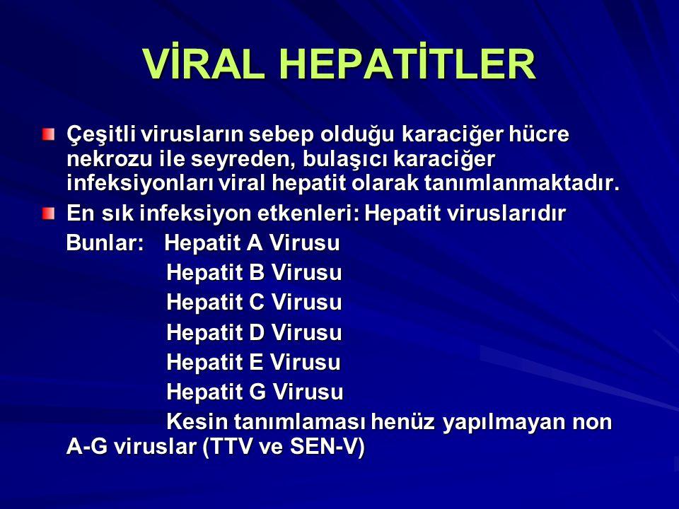 Hepatit geliştirebilen diğer viruslar Epstein Barr Virus Cytomegalovirus Herpes Simplex Virus Varicella-Zoster Virus Coxsackie B Virus Adenoviruslar Rubella Virusu Rubeola Virusu Kabakulak Virusu