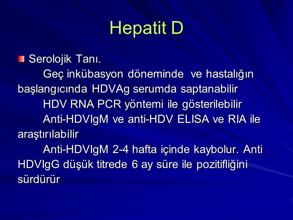Hepatit E Fekal-oral yolla geçen non-A, non-B hepatit olarak bilinir 27-34nm çapında küçük bir RNA virusudur Hastalık epidemiyoloji ve seyri bakımından A hepatitine benzer Su ile bulaşan salgınlar görülmüştür Kronikleşme görülmez Gebe kadınlarda %20'lere varan mortalitesi vardır Koruyucu aşısı yoktur