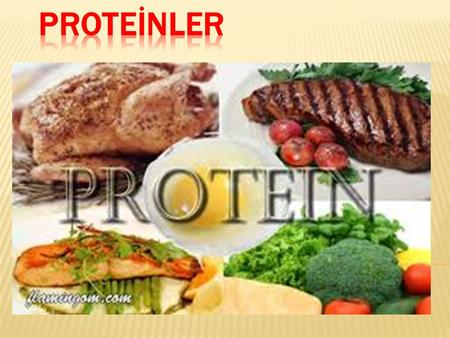 PROTEİNLER.
