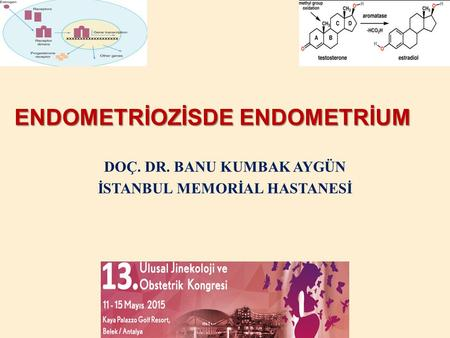 ENDOMETRİOZİSDE ENDOMETRİUM