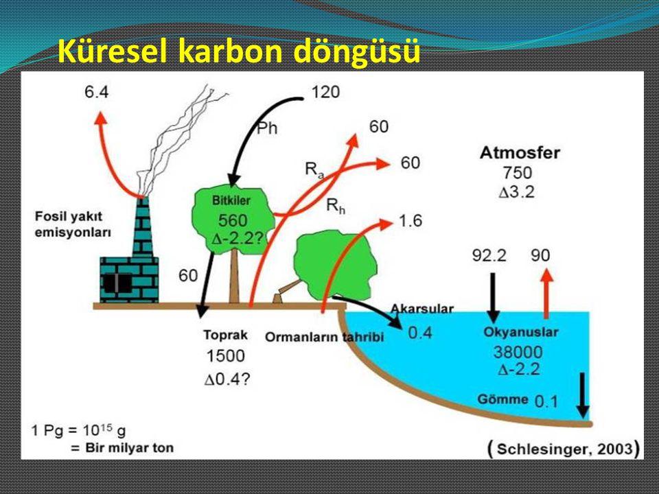 Toprak organik maddesi Organik polimerler Proteinler nükleik asitler polisakkaritler lignin yağlar Monomerler şekerler aminoasitler yağ asitleri fenolik bileşikler Mikrobiyel biyokütle CO 2 /HCO 3 fotosentez mineralizasyon solunum ölü Ölü/dekompozisyon asimilasyon
