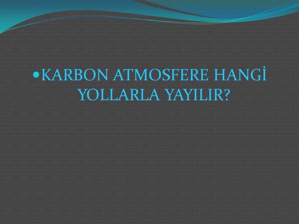 Karbon atmosfere birçok yolla yayılabilir; 1.