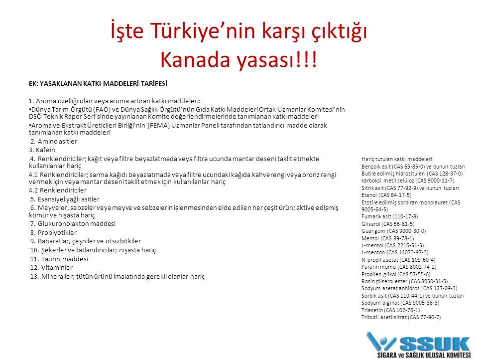 Türkiye nerede duruyor.