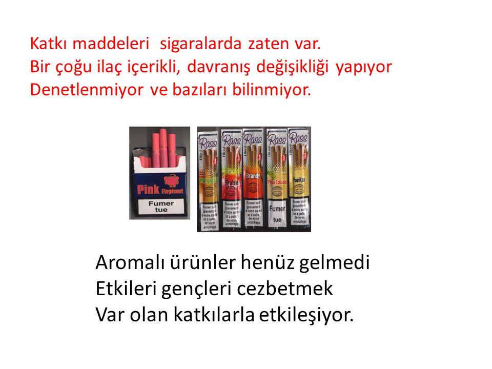 Nasıl önlenecek . Dünya Sağlık Örgütü (DSÖ) Tütün Kontrolü Çerçeve Sözleşmesi (TKÇS) 9 ve 10.
