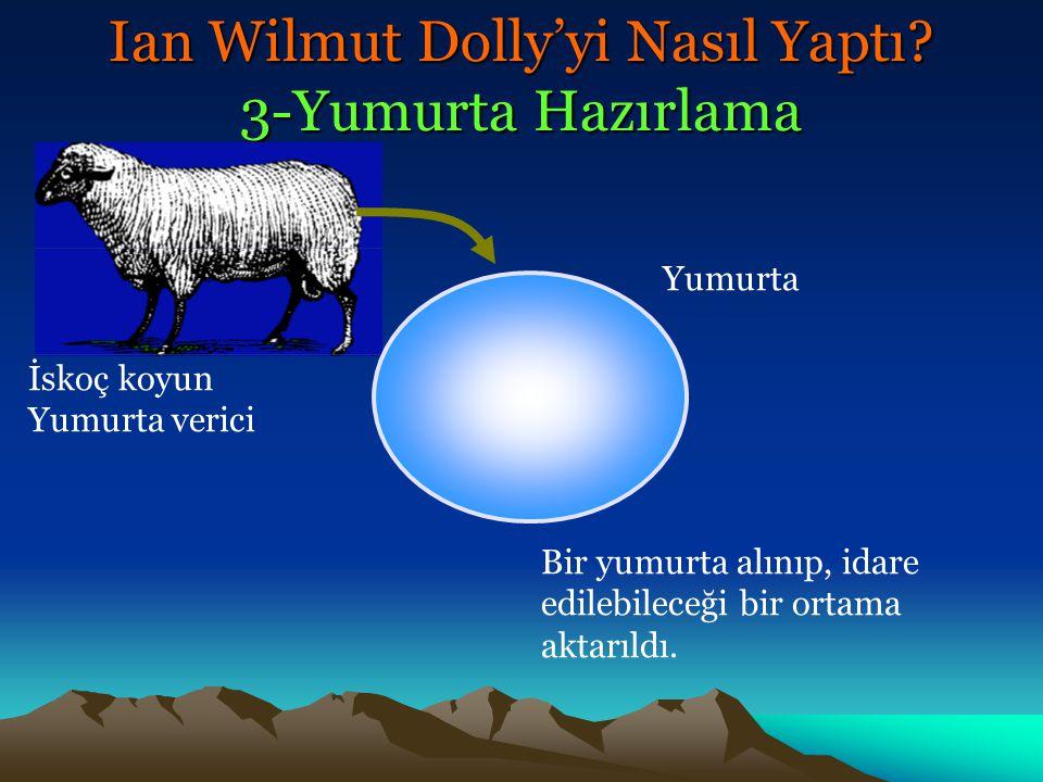 Vakum Cam pipet Yumurta Kromozomlar Ian Wilmut Dolly'yi Nasıl Yaptı? 3-Yumurta Hazırlama
