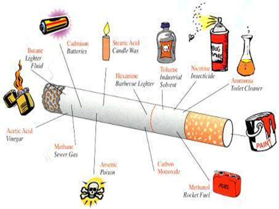 Sigara ve Nikotin Nikotin, sigaranın alı ş kanlık yapmasına neden olan etken maddedir.
