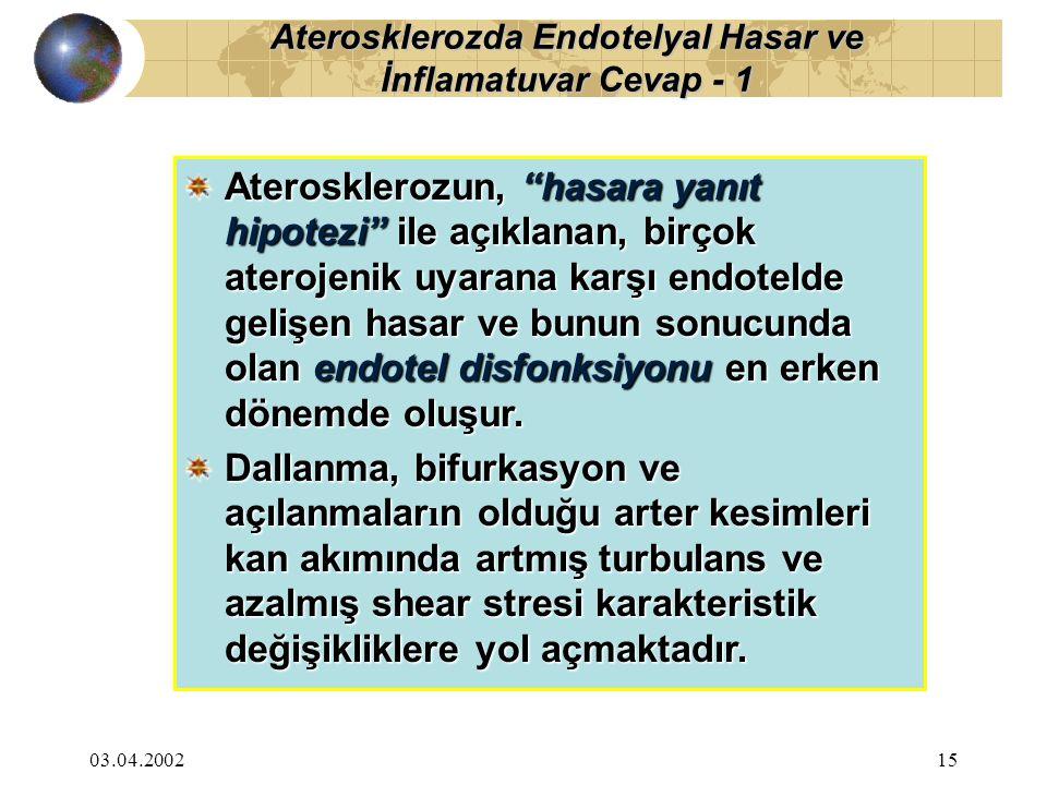 03.04.200216 Özellikle bu bölgelerde, eşlik eden aterojenik faktörler de varsa, yanıt olarak endotelyuma monosit, nötrofil ve T lenfositlerin göçü, yapışması ve birikimi olmaktadır.