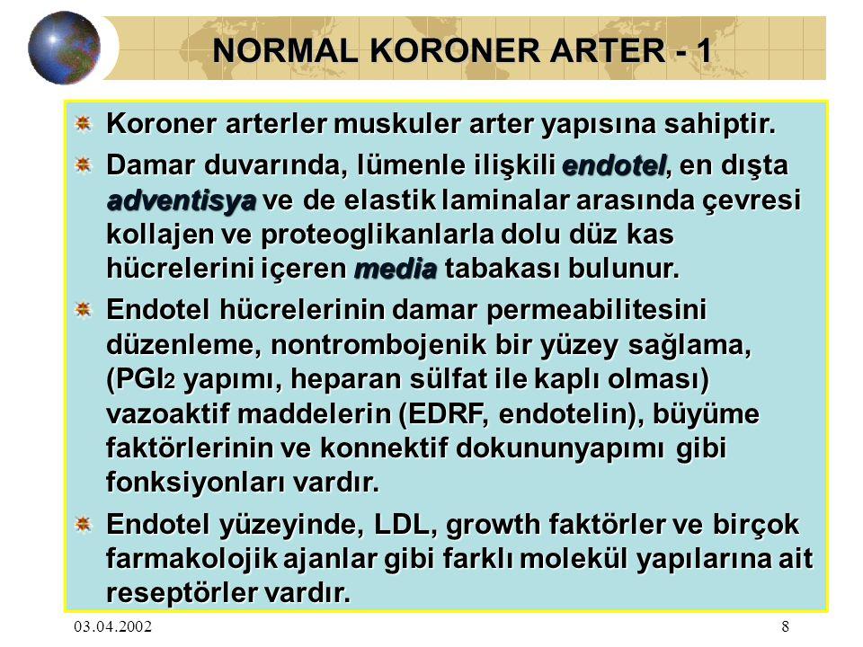 03.04.20029 NORMAL KORONER ARTER - 2 NORMAL KORONER ARTER - 2 Ayrıca endotel LDL'yi okside ederek modifiye LDL'ye dönüştürür, endotelden geçen bu molekül makrofajlar aracılığı ile hücre içine geçer ve köpük hücreleri oluşur.