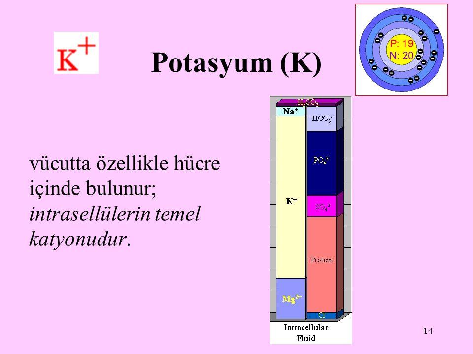 15 Potasyumun işlevleri: sodyumun ekstrasellülerdeki işlevlerini intrasellülerde üstlenir glikolitik yolda görevli pirüvat kinazı aktifleyen bir katyondur doku hücrelerinin fazlalaşmasını sağlayıcı etkisi vardır