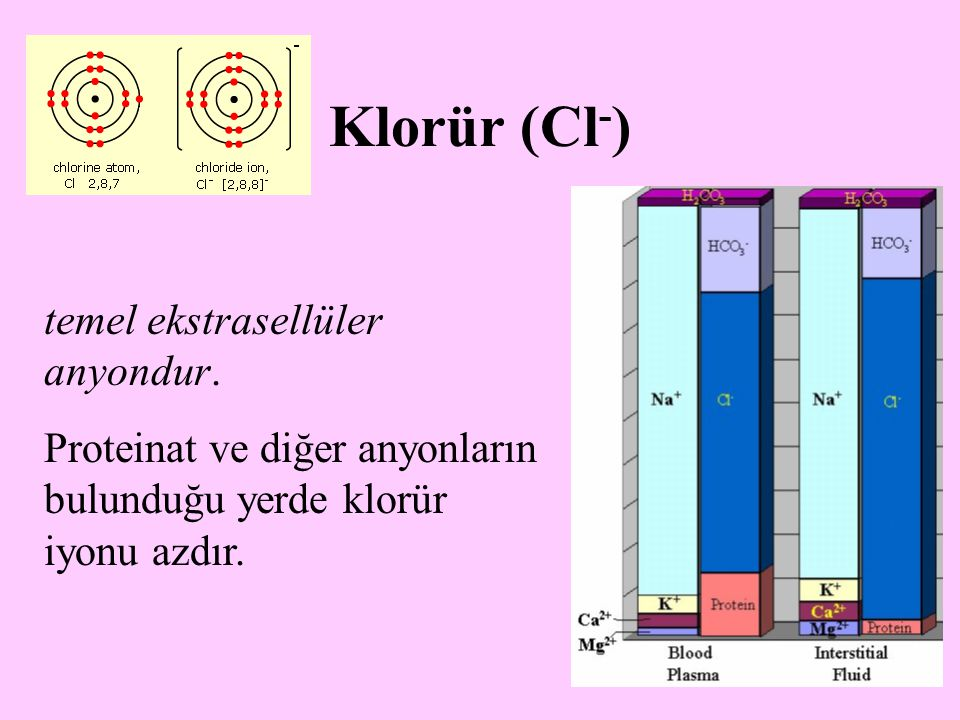 19 Plazmada HCO 3  konsantrasyonu artınca klorür kayması diye tanımlanan olayla klorür iyonu eritrositlerin içine kaçar.
