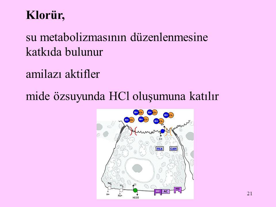 22 Erişkin sağlıklı bir insanda serum klorür düzeyinin normal değeri 98-108 mEq/L Serum klorür düzeyinin normalden yüksek olması hiperkloremi olarak tanımlanır Serum klorür düzeyinin normalden düşük olması hipokloremi olarak tanımlanır.