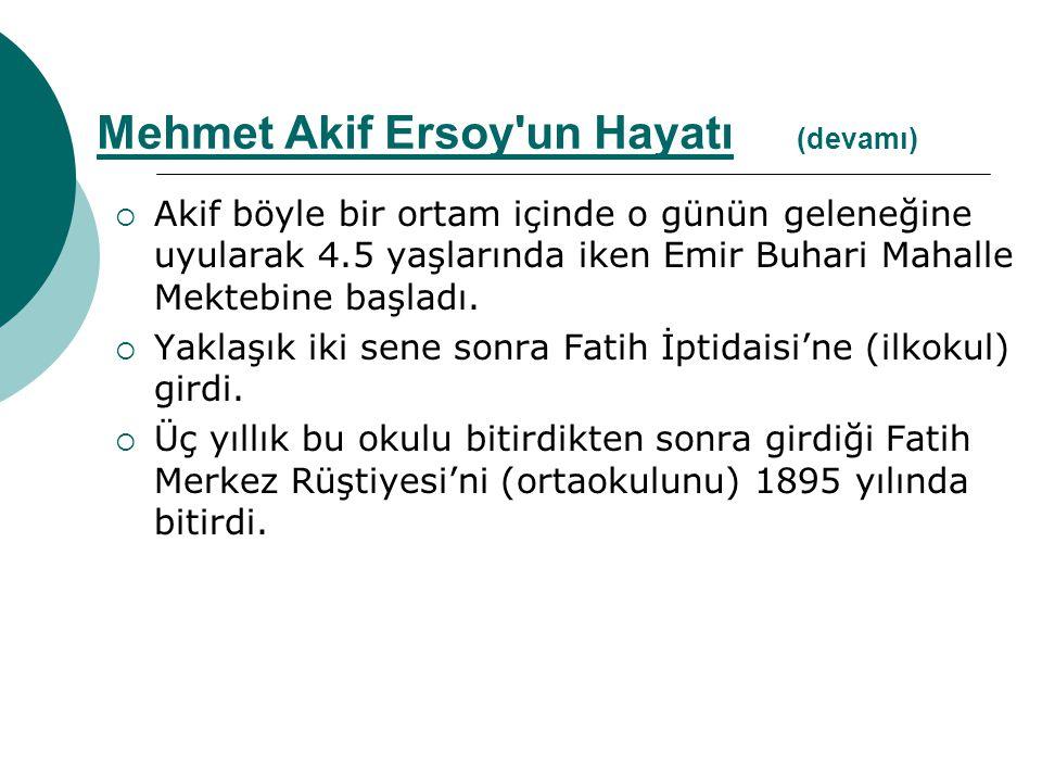  Türkçe, Arapça, Farsça ve Fransızca'ya ilgi gösterir.
