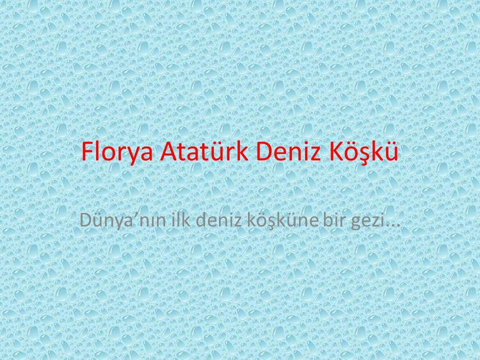 3-C'den Gezi Anlatımı Florya Atatürk Deniz Köşkü'ne gitmek için servislere bindik.Servislerde şarkılar da söyledik.Bu zevkli yolculuk bitince Florya Atatürk Deniz Köşkü'ne vardık.Burada rehber bizi burayla ilgili bilgilendirdi.Atatürk'e ait eşyaları gördük.Resimler ise bizi o zamana götürdü.