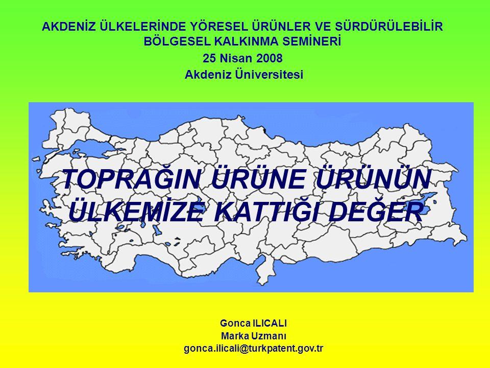 SUNUMUN İÇERİĞİ * İdari yapı * Coğrafi işaretlerin tanımı ve önemi * Türkiye'de coğrafi işaret koruması * Yeni kanun tasarısında öngörülen yenilikler Görece Nazarboncuğu
