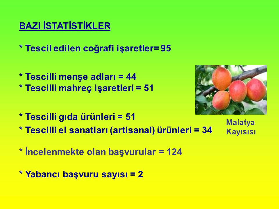 YURTDIŞINDAN YAPILAN BAŞVURULARDA ARANAN ŞARTLAR * Menşe ülkede coğrafi işaret olarak tescili * Menşe ülkedeki tescilinde de 555 sayılı KHK'da belirtilen başvuru şartları nın aranıyor olması * Menşe ülkenin Türkiye'den yapılacak başvurulara eşit bir koruma sağlaması Sonuç: Yukarıda sayılan koşulların hiçbirini karşılayamayan SOLINGEN başvurusu reddedilmiştir.