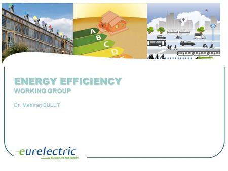 ENERGY EFFICIENCY WORKING GROUP ENERGY EFFICIENCY WORKING GROUP Dr. Mehmet BULUT.