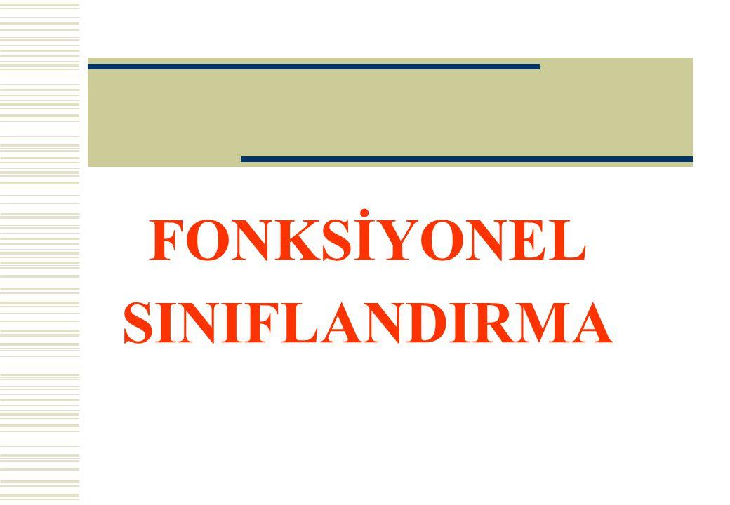  FONKSİYONEL SINIFLANDIRMA DEVLET FAALİYETİNİN TÜRÜNÜ GÖSTERMEK ÜZERE TASARLANMIŞTIR.