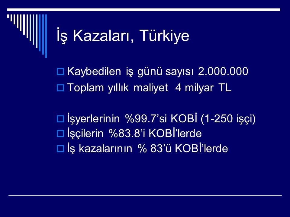 Türkiye'de hergün;  217 iş kazası olmaktadır. 4 işçi, iş kazası sonucu hayatını kaybetmektedir.