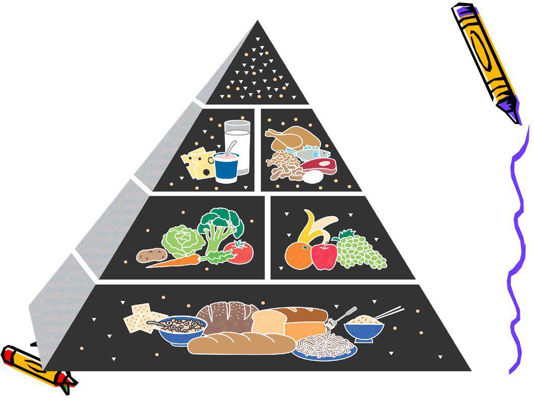 SAĞLIKLI BESLENME Sağlıklı beslenmek için 5 besin grubundan da yeterli ve dengeli miktarlarda tüketmek gerekir.
