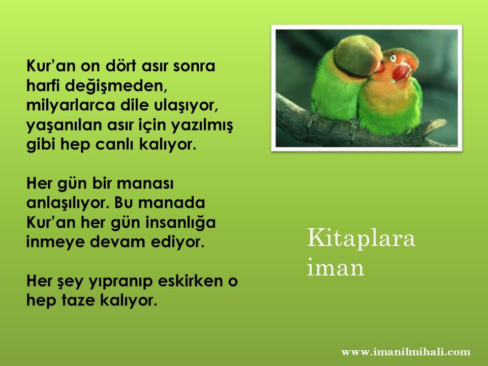 www.imanilmihali.com Kur'an eşsizdir.Okumanın bir yöntemi vardır.